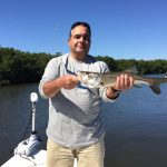 Snook Fishing Tampa Bay
