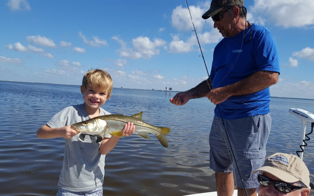 Stealth Fishing Charters / Tampa Fishing Charters