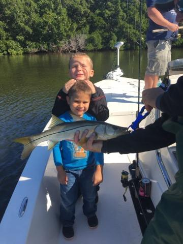 Snook Fishing Tampa Bay / Stealth Fishing Charters