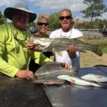 Snook Fishing Tampa