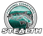 Tampa Fishing Charters - Capt. Jay Plastic